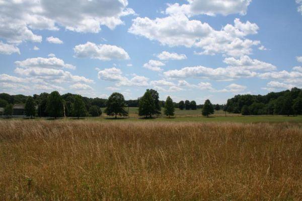 Harding fields