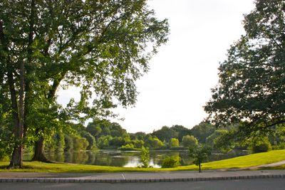 Springfield Pond