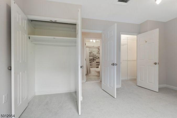 Walk-in closet + 2nd in BR