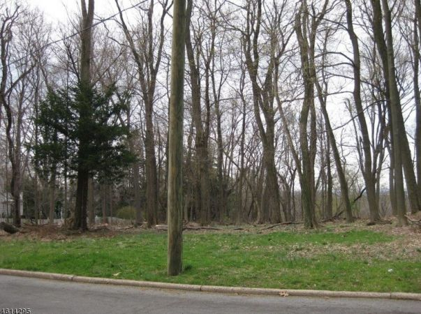 Summit NJ Lot For Sale